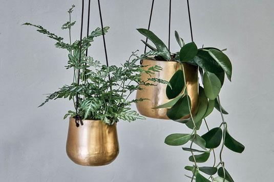 Antik Messing Design Hängetopf Gold Makramee mit Leder Premium Pflanzenampel Blumentopf Hängend