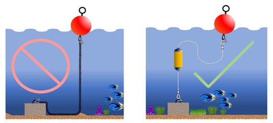 Mooring buoy system