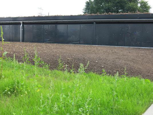 Rasen-Neuanlage