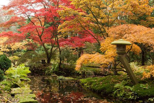 Jardin en automne aix en provence