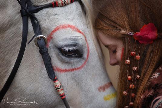 Fotoshooting weißer Connemarahengst - Danees Photography - Pferdefotografie in Bayern Würzburg Kitzingen Ochsenfurt Schweinfurt Werneck
