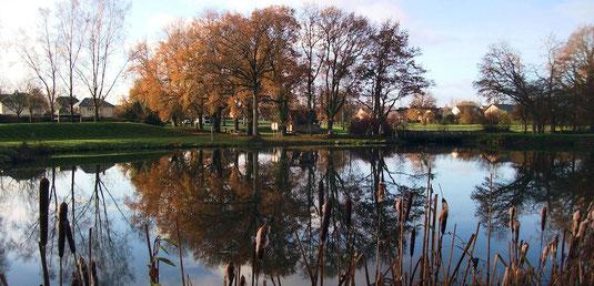 Couleurs de fin d'automne sur le plan d'eau de La Prévalaye