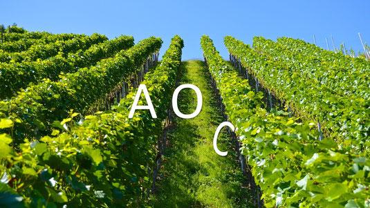 AOC et transition digitale : se réinventer ou disparaître !