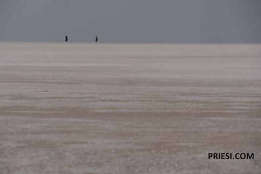 radeln auf dem Salzsee