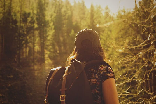 Phobia-free hiker in woods.