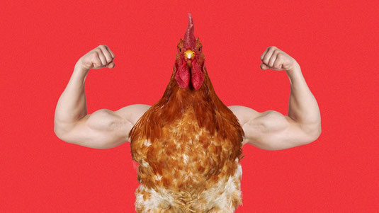 This is a very healthy cock xxxxxxxxxxxxxxxxxxxxxxxxxxxxxyyyyyyyyyyyyyyyyyyyyyyyyyyyyyyyyy