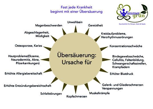 Kangen_Wasser_Uebersaeuerung_basisch_Muedigkeit_Durchblutung_Loiwein_Purk_Waldviertel_Zwettl_Krems