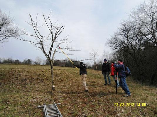 Pflegemaßnahme mit dem Landschaftspflegeverband 2013 (Foto: B. Langenegger)