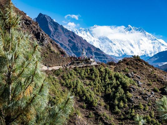 Der wunderschöne Höhenweg verläuft lange Zeit entspannt am Berg entlang.