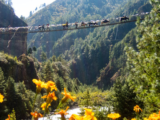 Toller Ausblick während unserer Mittagspause auf die Hängebrücke