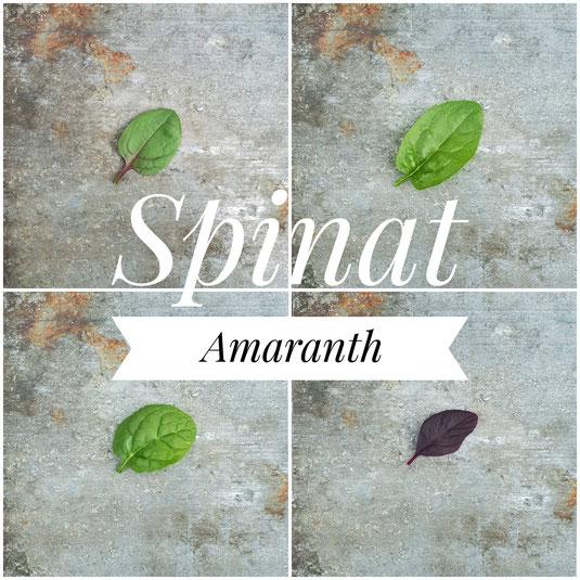 Rot-gestriefte und grüne Spinat-Sorten, Roter Amarant