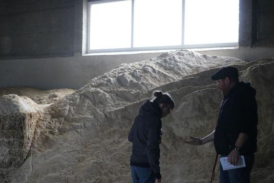 Wie muss sich Schrot anfühlen, wie muss es aussehen, wie riechen? Grundlagen der Ausbildung zum:r Landwirt:in