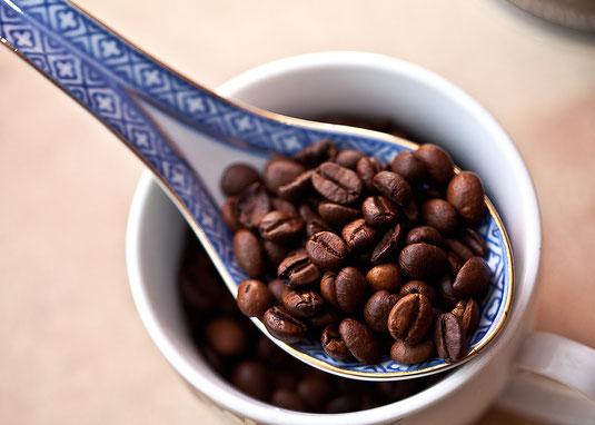 kaffeebohnen vollautomat kaufen