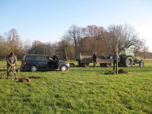 Anpflanzung von seltenen Obstbaumsorten (c) Heinrich Beigel