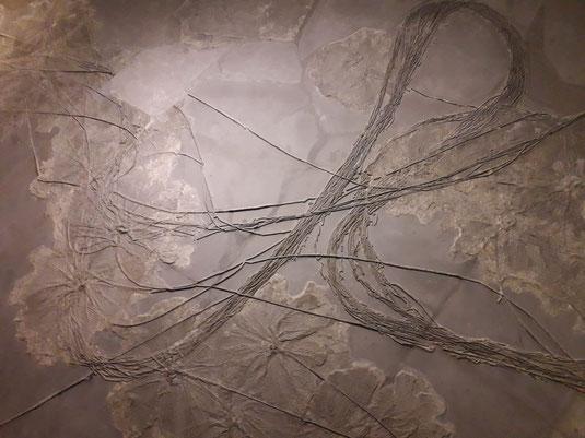 'Schwäbisches Medusenhaupt', Bild von Fiona Gottschling und Elisabeth Hellweg.