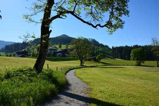 Der Weg führt auch direkt am Zeltplatz vorbei.