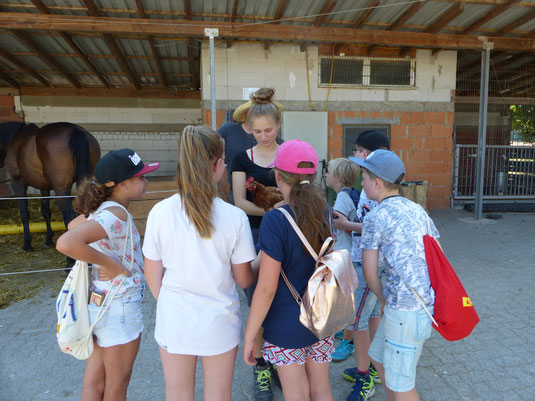 Jugendseminar auf dem Lindenhof bei Niedernberg (Sabine Michael)