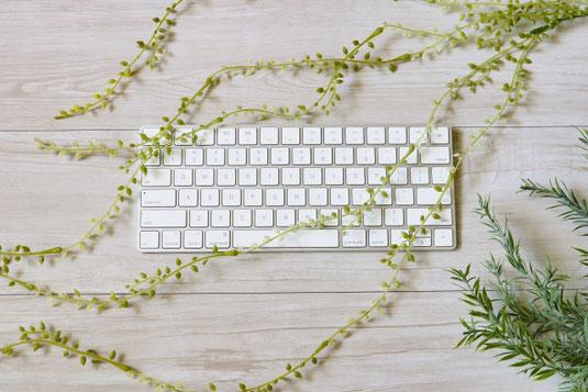 メモ帳のうえに置かれた電卓と万年筆。観葉植物のグリーン。