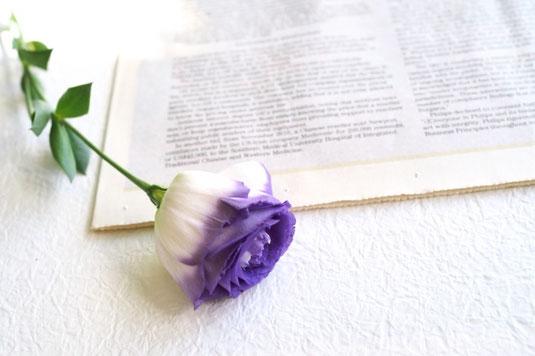 パソコンのキーボードの前に置かれたビジネスグッズ。クリアファイル、ノート、手帳、メモ帳。ボールペンと電卓。トレー。鉢植えの観葉植物。