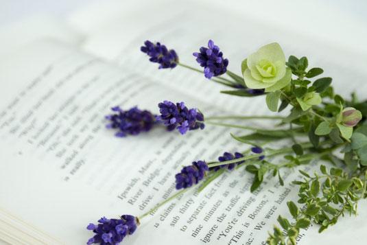 ページが開かれた書籍。ページのはざまに置かれたライラックの花が一輪。