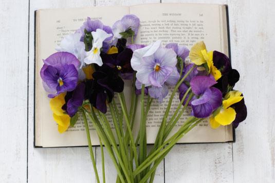 ページが開かれた洋書。そのうえに並べられたパンジーの花。