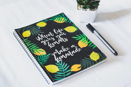 メモ帳と万年筆。カスミソウ。