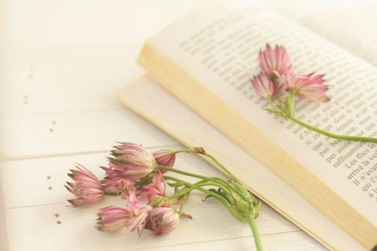 観葉植物の青い鉢と置時計。