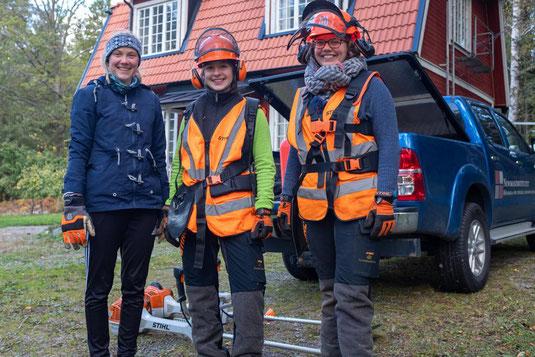 Waldarbeit am Ferienhaus der Hochschule (Foto: Philip Geister)