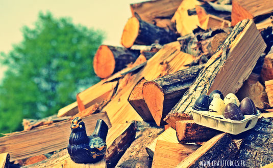 chauufage bois 49 angers cheminée bonnaventure