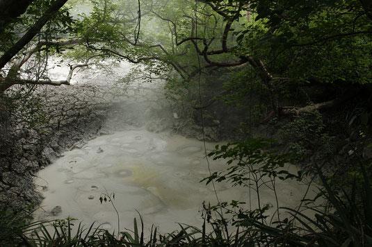 Rincon de la Vieja National Park, mud pots, thermal activity, volcano