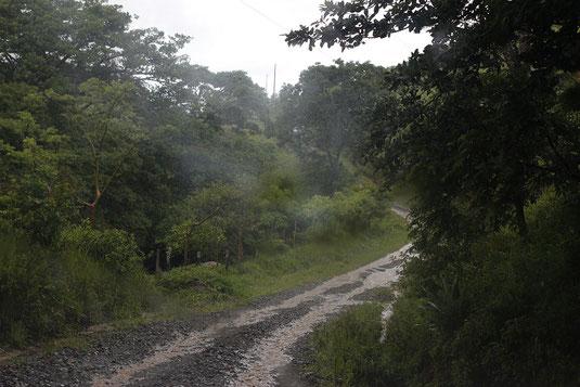 Driving in Costa Rica, rain, jungle, adventure trip