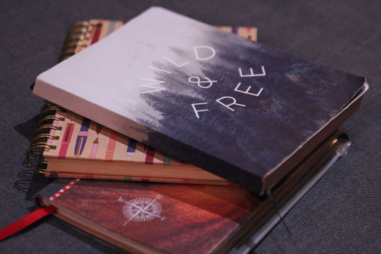 Travel diaries, travel book, author, notes