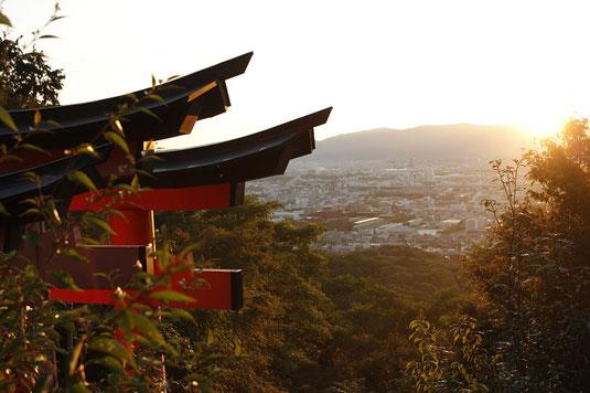 Am Gipfel von Fushimi Inari, Blick über Kyoto bei Sonnenuntergang