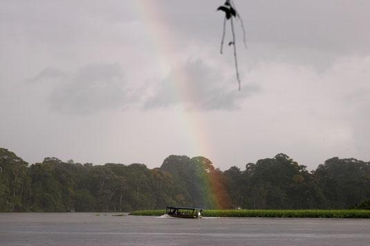 Tortuguero, canoe tour, rainforest, national park Costa Rica