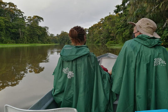 Rainforest tour with a canoe at Tortuguero National Park, Costa Rica