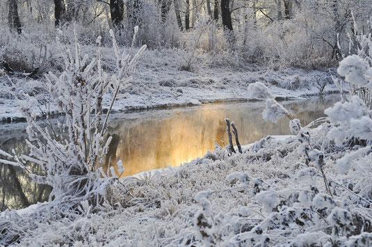 Schneebedeckte Landschaft