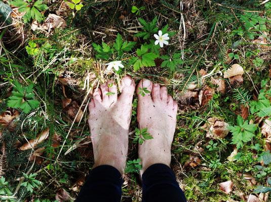 Naturerlebnis, Persönlichkeitsentwicklung, Waldbaden