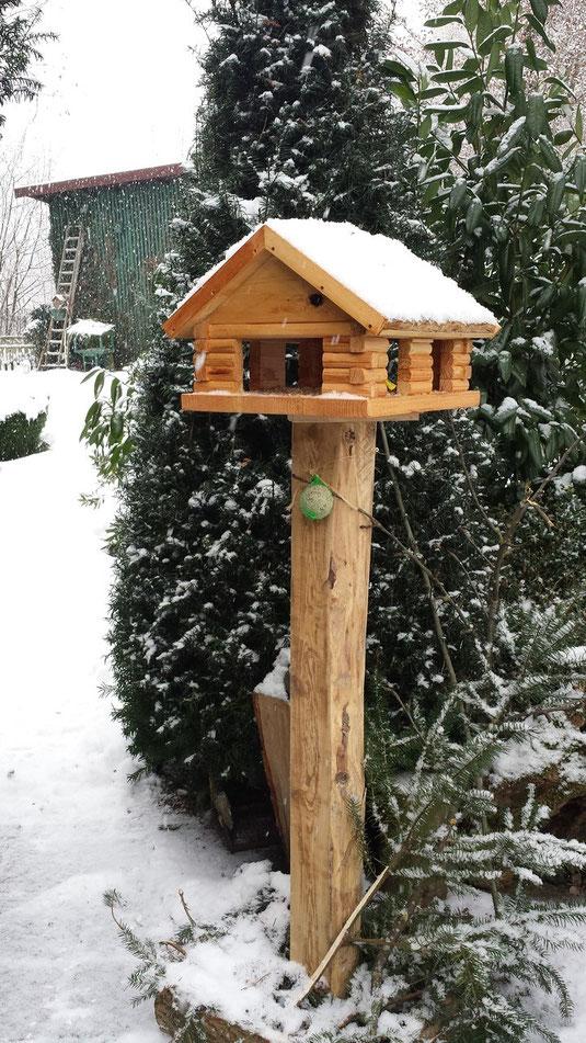 Unser Futterhaus im Vorgarten - wir haben 5 Futterstellen ums Haus und die ganze Hecke mit Meisenknödleln behängt.