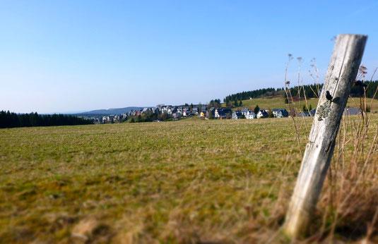 """Die Hochweide """"Land"""" bei Steinheid liegt über 800 m NHN"""