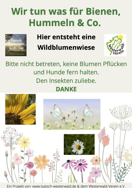 Wildblumenwiese im Leppartshahn