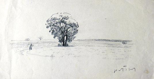 Hans Potthof Zeichnung Landschaft mit Baum