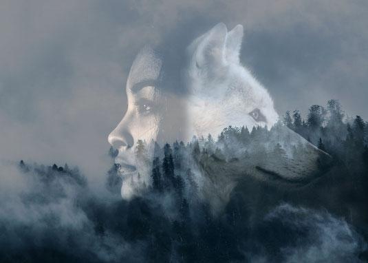 Wolf mythologie mythos wölfe geschichte kultur kulturen mensch menschen magie verbundenheit frau geschichte film buch bücher