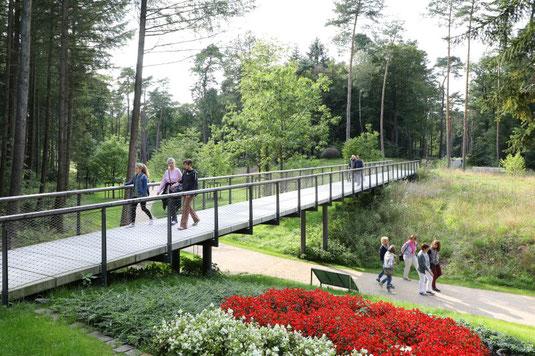 Von der Dünenbrücke hat Ihr einen fantastischen Blick auf das Dünental @ Stadt Bad Lippspringe