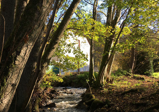 Mühle mit Mühlbach