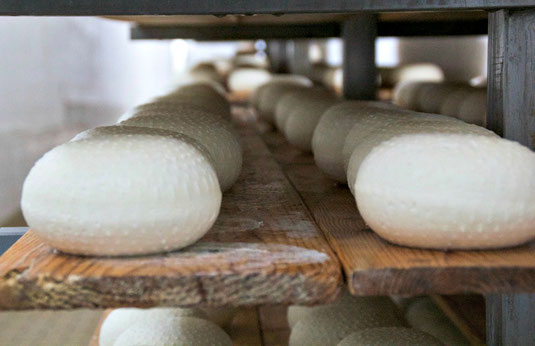 formaggio, pecorino, dop, toscano, toscana, caseificio, maremma, mangiare, latte, qualità