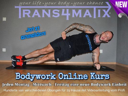 Wir starten den beliebten T4X Bodyworkkurs nun Online