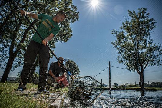 Weiher Fischzucht Fisch Wasser Forellenzucht Simon Fischer Forellen