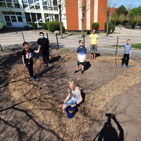 Natur und Imkerhof Zingst ImkerKids Umweltbildung Schule Zingst Insektenfreundlich