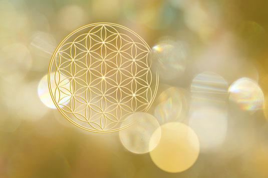 goldene Blume des Lebens