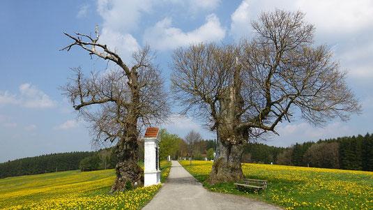 Kreuzwegstationen im Allgäu, Foto: Pixabay